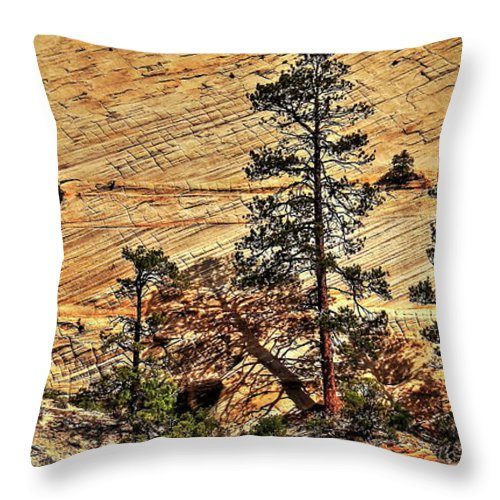 Zion National Park Throw Pillow featuring the photograph Zion National Park by Onie Dimaano