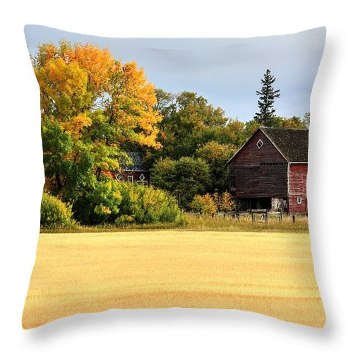 Autumn Fall Harvest Time For Farmers And Families Throw Pillow featuring the photograph Autumn Barn by David Matthews