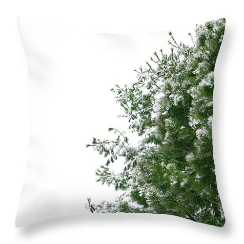 Christmas Throw Pillow featuring the photograph Christmas Background by Michelle Himes