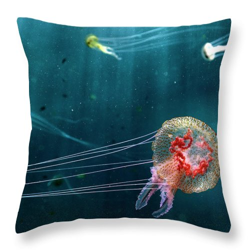 Underwater Throw Pillow featuring the photograph Jellyfish Noctiluca Pelagia by © Francesco Pacienza