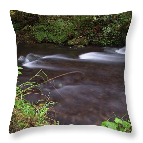 Long Throw Pillow featuring the photograph Long Exposure Photographs Of Rolling River With Fall Foliage by Daryl Robbins