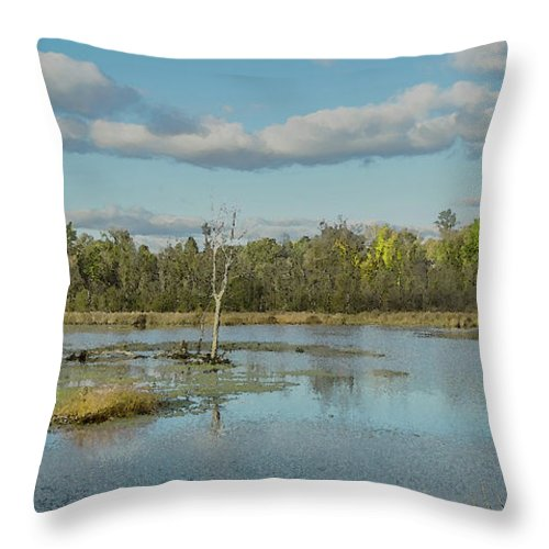 Pond Throw Pillow featuring the photograph Mill Pond by Greg Thiemeyer