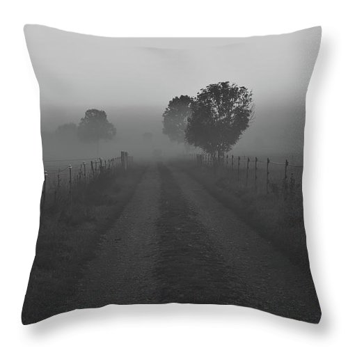 Sunrise Throw Pillow featuring the photograph Morning Mist by Pixabay