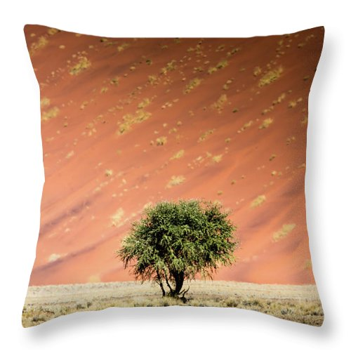 Tranquility Throw Pillow featuring the photograph Namib Desert by Manuel Romaris