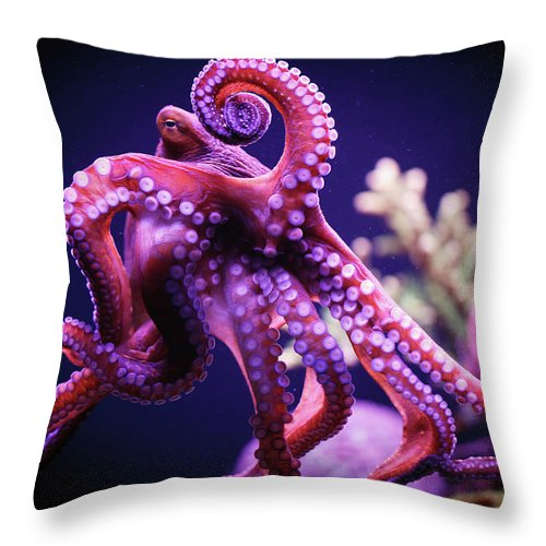 Underwater Throw Pillow featuring the photograph Octopus by Reynold Mainse / Design Pics