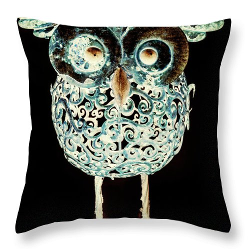 Animal Throw Pillow featuring the photograph Ornamental Ornithology by Jorgo Photography - Wall Art Gallery