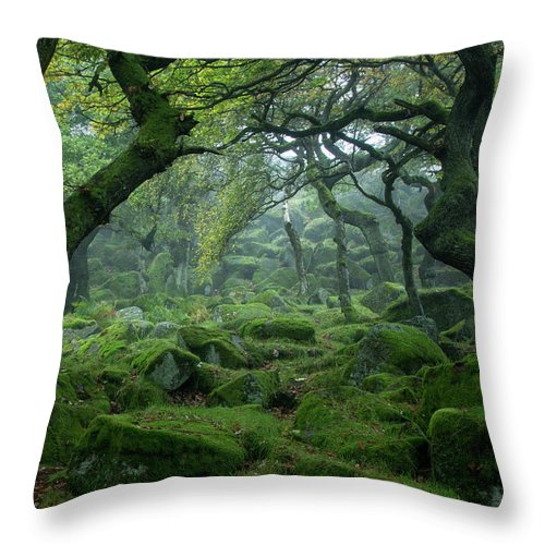 Tranquility Throw Pillow featuring the photograph Padley Gorge by Duncan Fawkes
