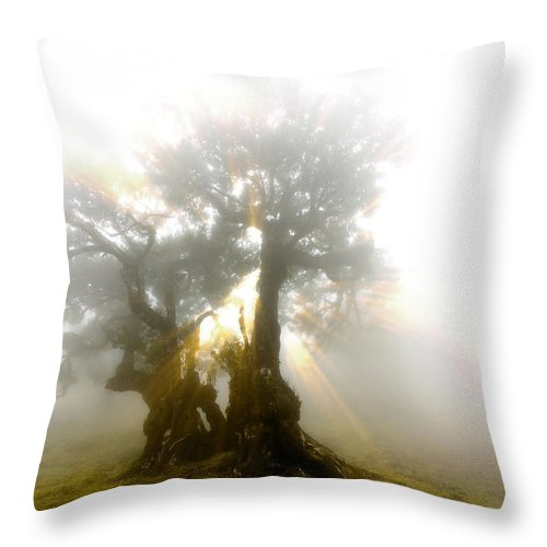 Fog Throw Pillow featuring the photograph Place Of Silence by Sasha