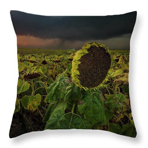 Tornado Throw Pillow featuring the photograph Twisted by Aaron J Groen
