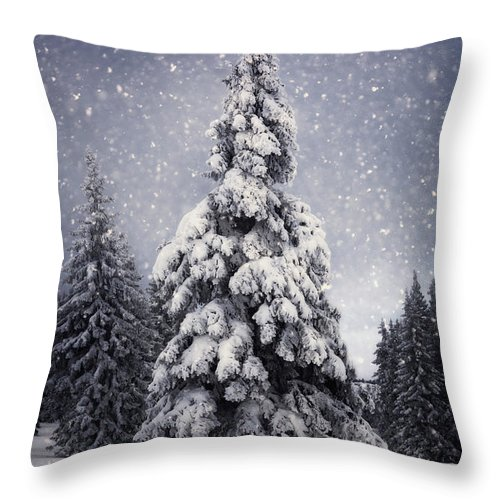 Scenics Throw Pillow featuring the photograph Winter Tree by Borchee
