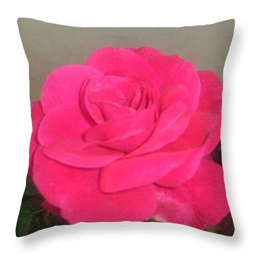 Throw Pillow featuring the photograph Pink Rose by Nimu Bajaj and Seema Devjani