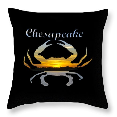 2d Throw Pillow featuring the photograph Chesapeake by Brian Wallace