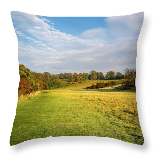 Easby Throw Pillow featuring the mixed media Easby To Richmond by Smart Aviation