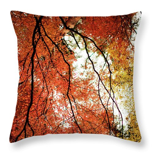 Tranquility Throw Pillow featuring the photograph Fall Colors In Japan by Jdphotography