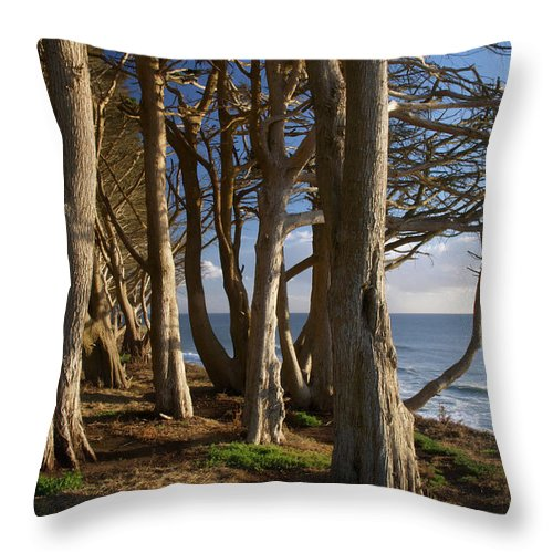 Tranquility Throw Pillow featuring the photograph Rustic Davenport Coast by Mitch Diamond