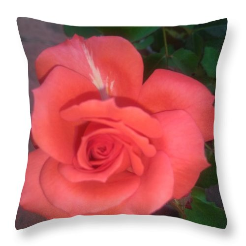 Throw Pillow featuring the photograph Rose by Nimu Bajaj and Seema Devjani