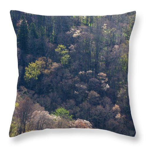 Scenics Throw Pillow featuring the photograph Early Spring, North Carolina by Jerry Whaley