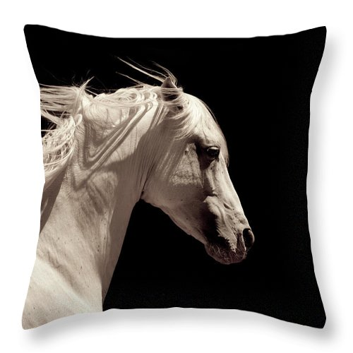 Horse Throw Pillow featuring the photograph White Stallion Horse Andalusian by 66north