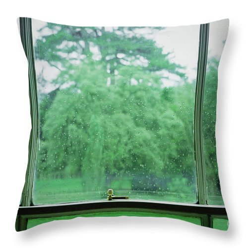 Abstract Throw Pillow featuring the photograph Rainy Garden View by Tom Gowanlock