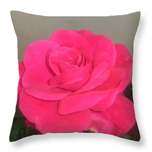 Throw Pillow featuring the photograph Pink Rose by Nimu Bajaj and Seema Devjani