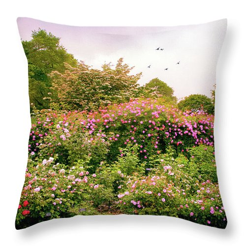 New York Botanical Garden Throw Pillow featuring the photograph Rose Garden Greeting by Jessica Jenney