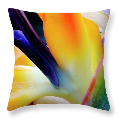 Banana Tree Throw Pillow featuring the photograph A Close-up Of A Flower Of A Bird Of by Eromaze