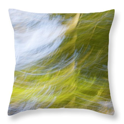 Full Frame Throw Pillow featuring the photograph Abstract Close Up Of Trees by Background Abstracts