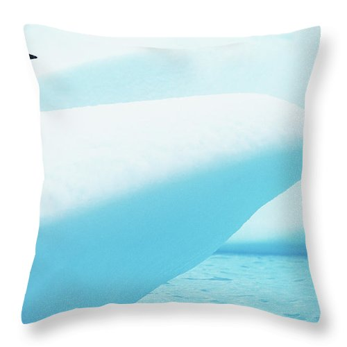 The End Throw Pillow featuring the photograph Adelie Penguin Pygoscelis Adeliae by Paul Souders