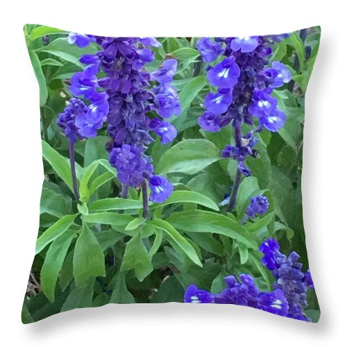 Throw Pillow featuring the photograph All Yours by Gewanda Parker