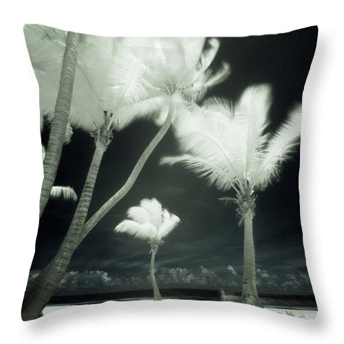 Wind Throw Pillow featuring the photograph An Infrared Image Of Tall Palm Trees by Mint Images/ Art Wolfe