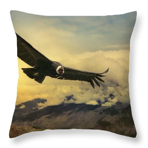 Animal Themes Throw Pillow featuring the photograph Andean Condor by Istvan Kadar Photography