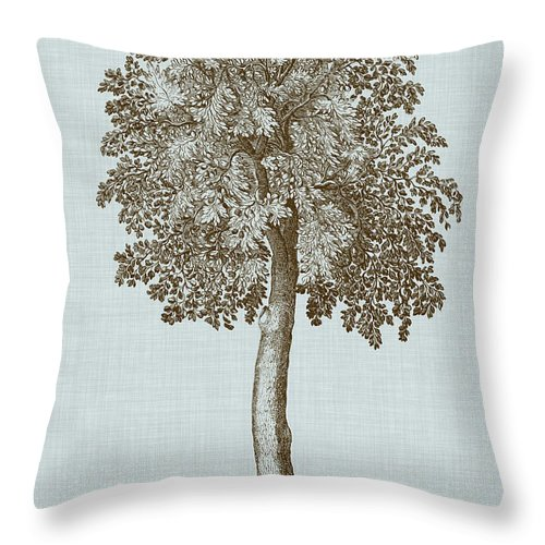 Botanical Throw Pillow featuring the painting Antique Tree In Sepia II by Vision Studio