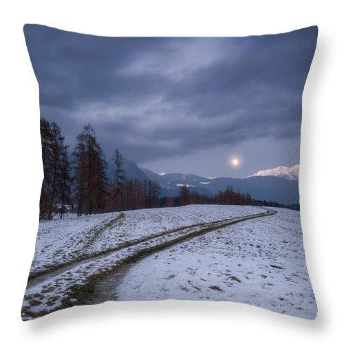 Blue Throw Pillow featuring the photograph Aquarius by Ludwig Riml