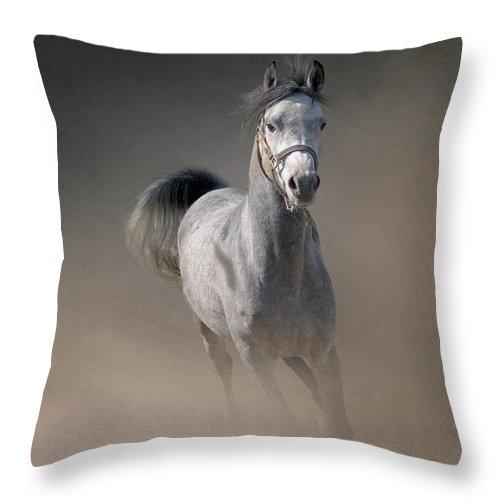 Horse Throw Pillow featuring the photograph Arabian Horse Running Through Dust by Christiana Stawski