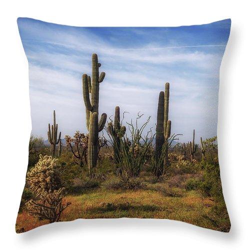 Cactus Throw Pillow featuring the photograph Arizona Dreaming by Lorraine Harrington