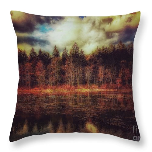 Lake Throw Pillow featuring the photograph Autumn At The Lake by David Rucker