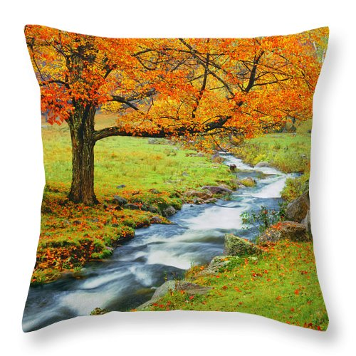 Scenics Throw Pillow featuring the photograph Autumn In Vermont G by Ron thomas