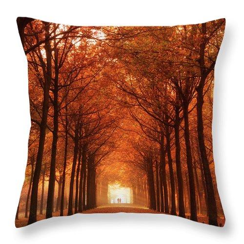 Autumn Throw Pillow featuring the photograph Autumn Lights At Groeneveld by Tashina Van Zwam