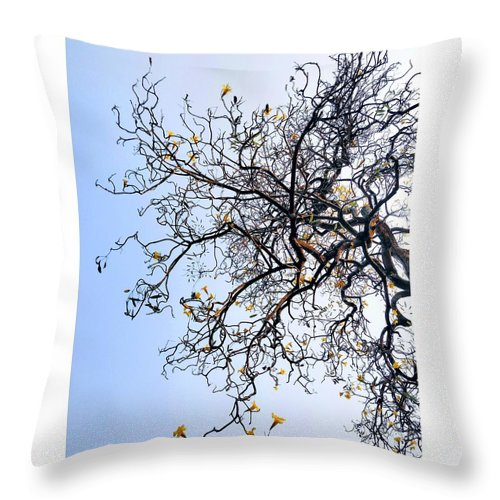 Autumn Throw Pillow featuring the photograph Autumn by Priya Hazra