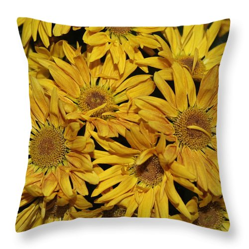 Chrysanthemums Throw Pillow featuring the photograph Autumn Splendor - Golden Chrysanthemums by Dora Sofia Caputo Photographic Design and Fine Art