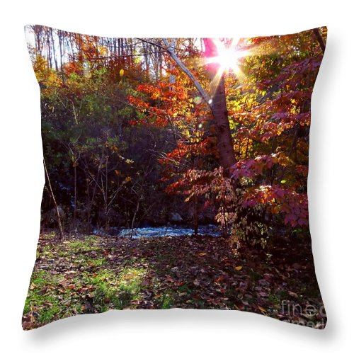 Fall Throw Pillow featuring the photograph Autumn Starburst by Bonnie J Thompson