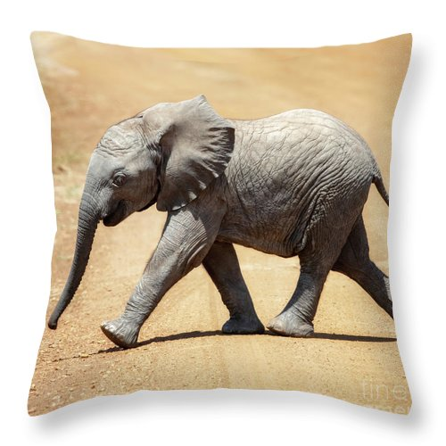 Baby Throw Pillow featuring the photograph Baby African Elephant by Jane Rix