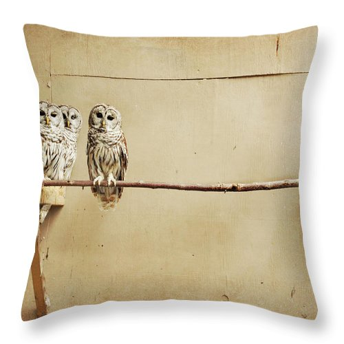 Scranton Throw Pillow featuring the photograph Baby Barred Owls by Tara Reifenheiser
