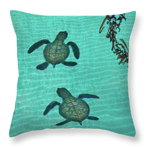 Seaweed Throw Pillow featuring the photograph Baby Sea Turtles by Melinda Moore