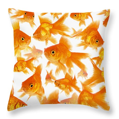 Orange Color Throw Pillow featuring the photograph Background Showing A Large Group Of by Cocoon