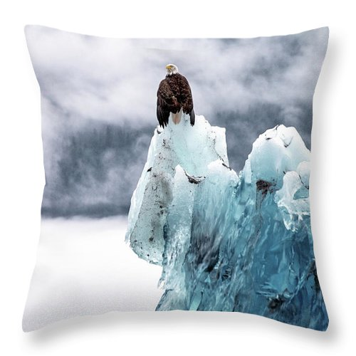 Iceberg Throw Pillow featuring the photograph Bald Eagle On The Glacier by Naphat Photography