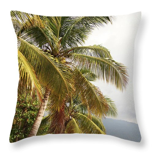 Tropical Tree Throw Pillow featuring the photograph Beach In Haiti by 1001nights