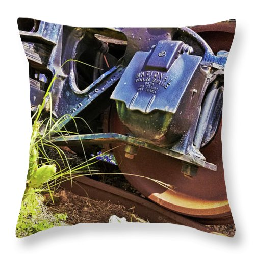 Train Throw Pillow featuring the photograph Between Bluebonnets And A Cactus by Anthony Scarpace