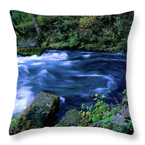 Scenics Throw Pillow featuring the photograph Big Spring, Ozarks National Scenic by John Elk Iii