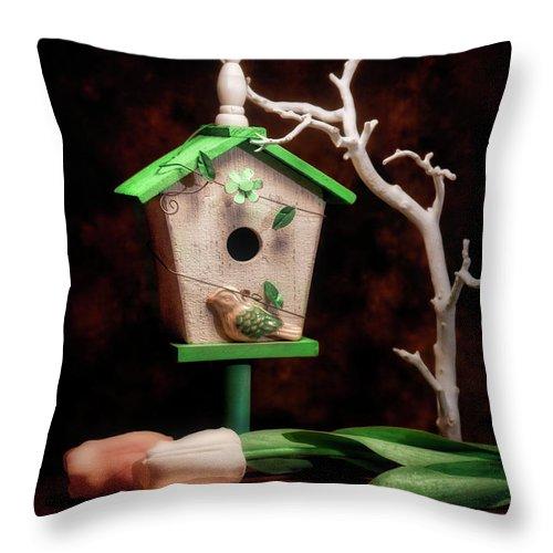 Birdhouse Throw Pillow featuring the photograph Birdhouse With Tulips by Tom Mc Nemar